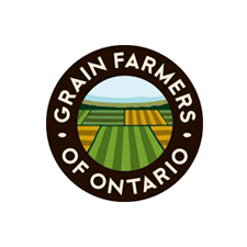 grain farmers